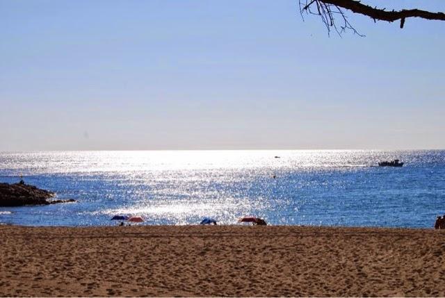 playa saconca sagaro